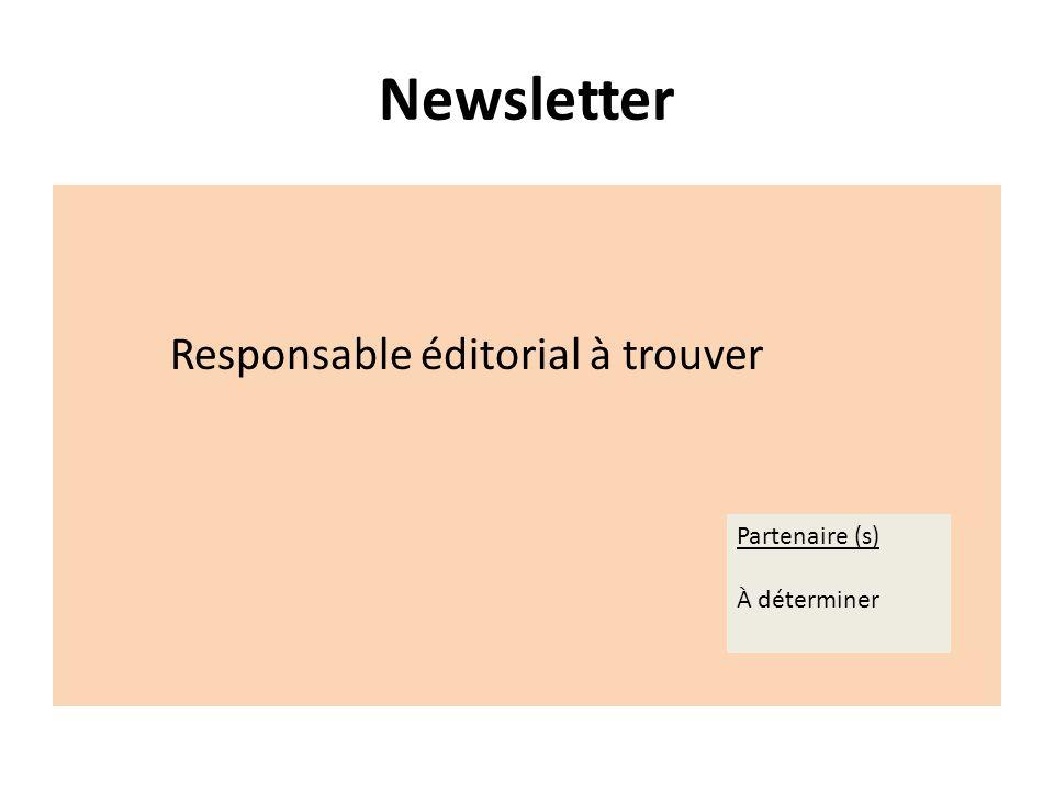 Newsletter Responsable éditorial à trouver Partenaire (s) À déterminer