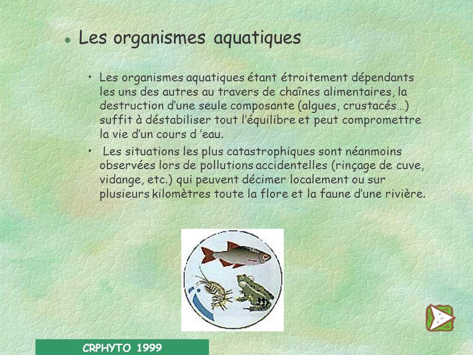 CRPHYTO 1999 l Les oiseaux Herbivores, insectivores, granivores ou carnivores selon les espèces, ils consomment donc des quantités de pesticides varia