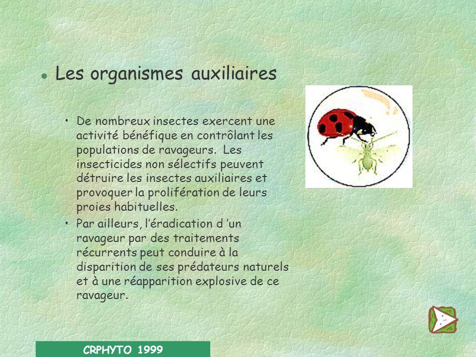 CRPHYTO 1999 l Les abeilles La pollinisation d arbres fruitiers et de nombreuses plantes cultivées (colza, lin, féverole, trèfle…) et la production de