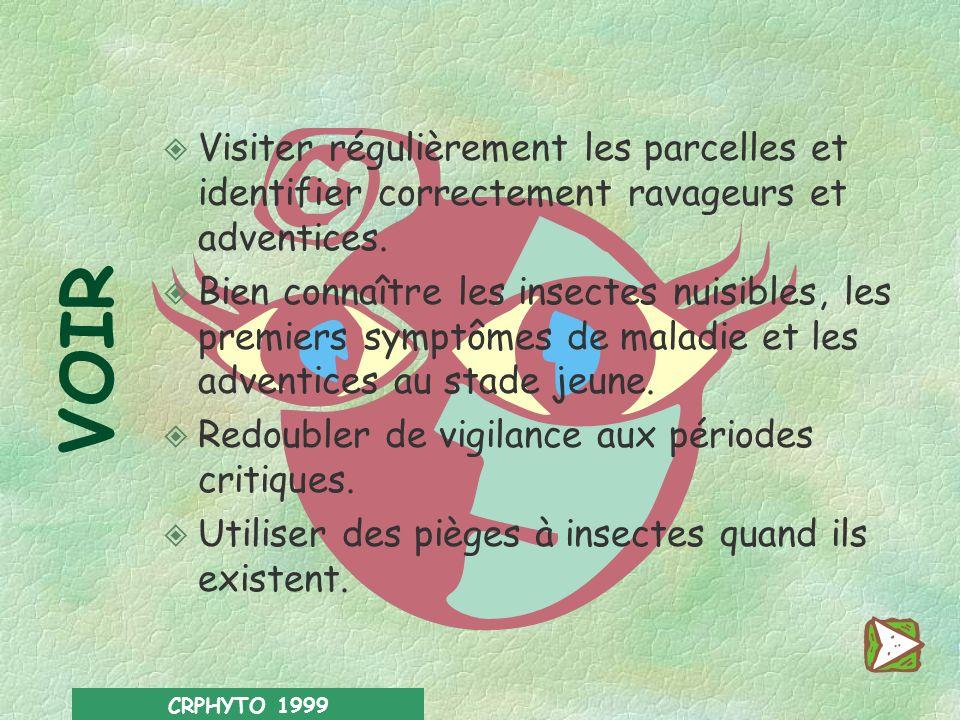 CRPHYTO 1999 -1- Raisonner les interventions l Mettre en œuvre une stratégie de protection raisonnée, voire intégrée, quand cest possible. l Eviter au