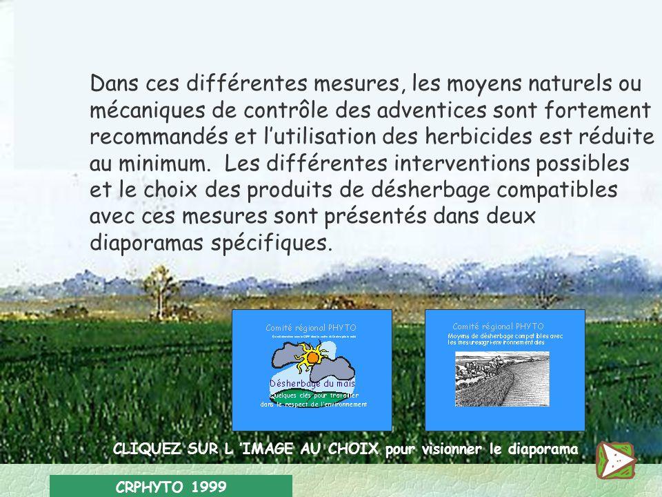 CRPHYTO 1999 Parmi les mesures agri-environnementales subsidiées par la Région wallonne certaines encouragent la réduction du recours aux produits phy