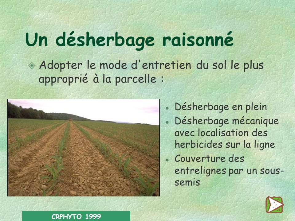 CRPHYTO 1999 De bonnes conditions de semis Préférer la rotation à la monoculture Eviter les semis en bordure de cours d'eau et sur les terres à forte