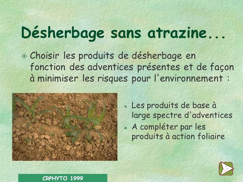 CRPHYTO 1999 Un désherbage raisonné Adopter le mode d'entretien du sol le plus approprié à la parcelle : l Désherbage en plein l Désherbage mécanique