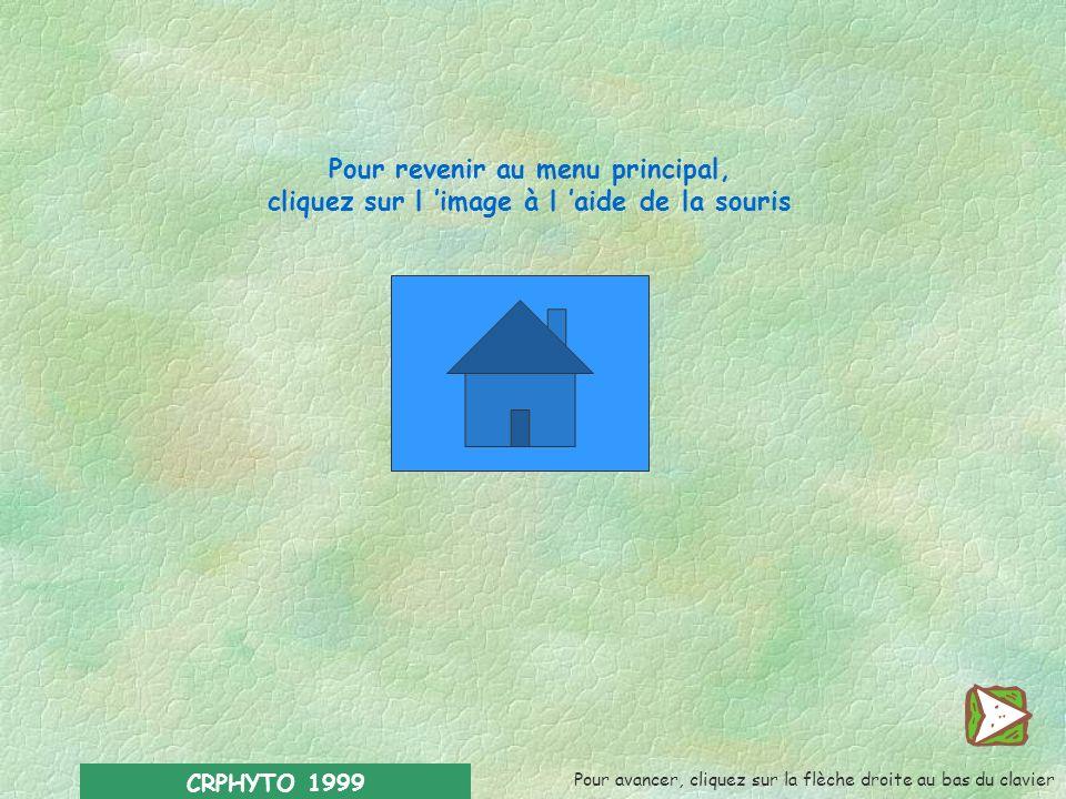 CRPHYTO 1999 Sources d informations : l Liste des pesticides à usage agricole agréés. Ministère des classes moyennes et de lagriculture. Bruxelles-B 1