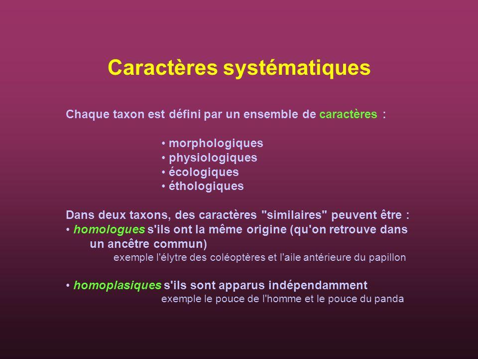 Caractères systématiques Chaque taxon est défini par un ensemble de caractères : morphologiques physiologiques écologiques éthologiques Dans deux taxo