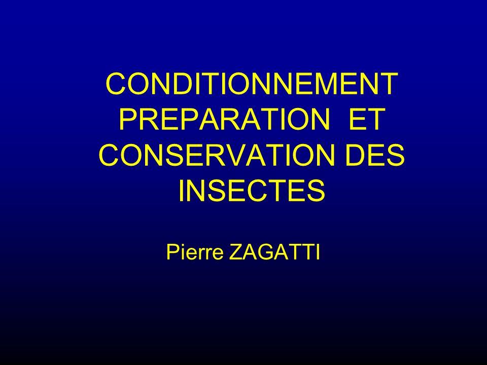 CONDITIONNEMENT PREPARATION ET CONSERVATION DES INSECTES Pierre ZAGATTI