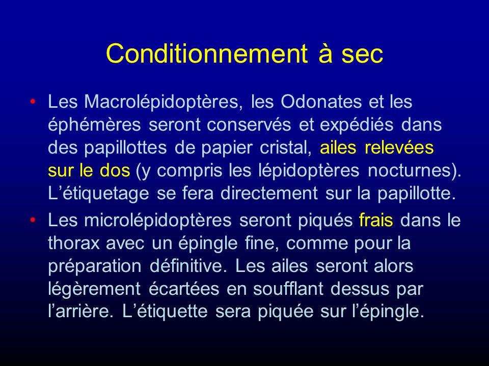 Conditionnement à sec Les Macrolépidoptères, les Odonates et les éphémères seront conservés et expédiés dans des papillottes de papier cristal, ailes