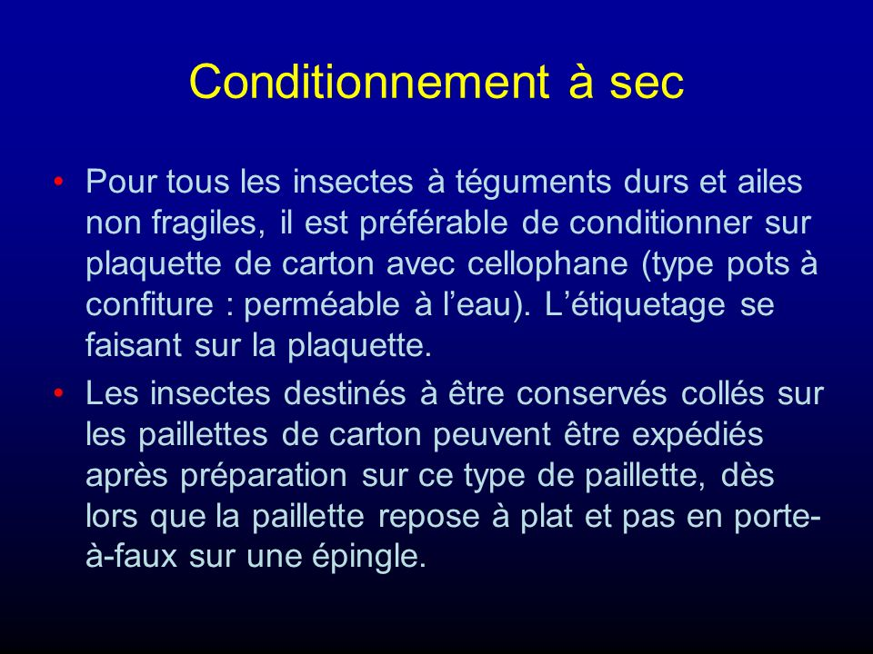 Conditionnement à sec Pour tous les insectes à téguments durs et ailes non fragiles, il est préférable de conditionner sur plaquette de carton avec ce