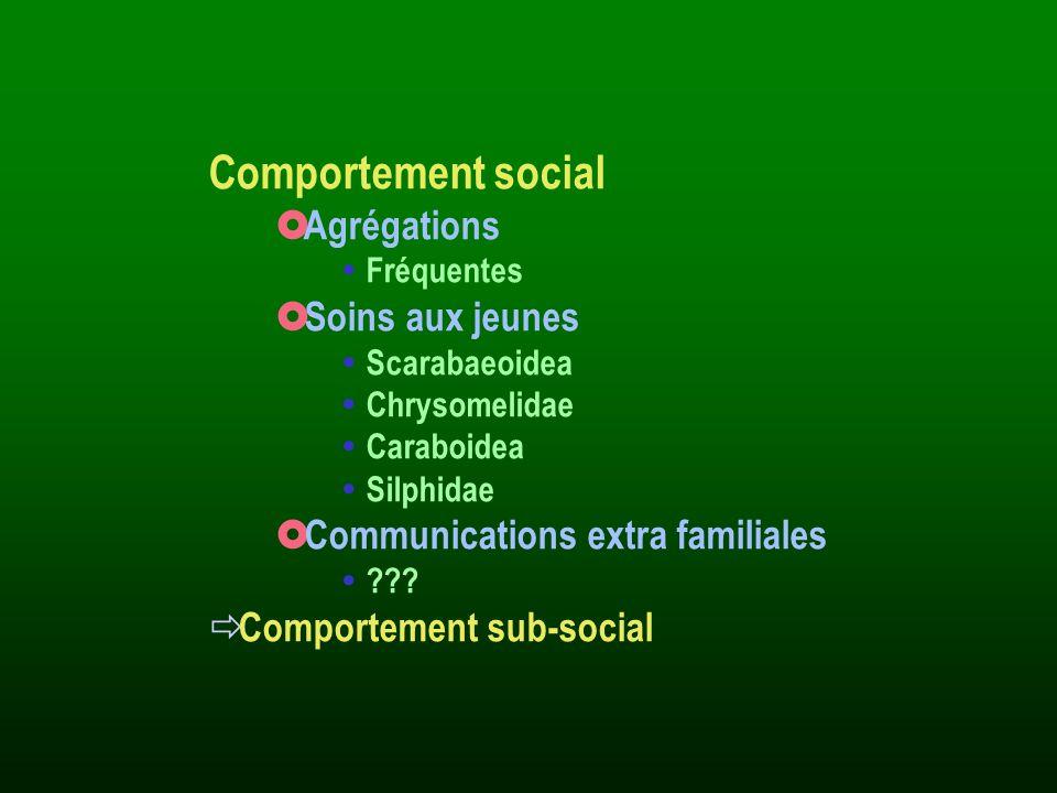 Comportement social Agrégations Fréquentes Soins aux jeunes Scarabaeoidea Chrysomelidae Caraboidea Silphidae Communications extra familiales ??? Compo
