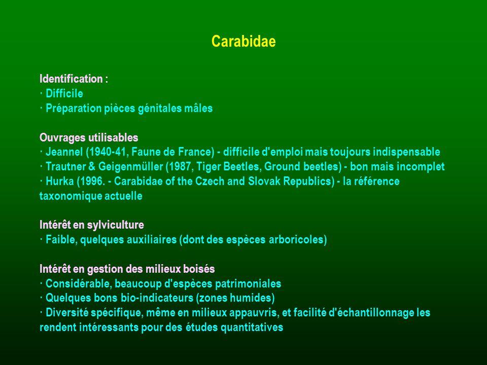 Identification : · Difficile · Préparation pièces génitales mâles Ouvrages utilisables · Jeannel (1940-41, Faune de France) - difficile d'emploi mais
