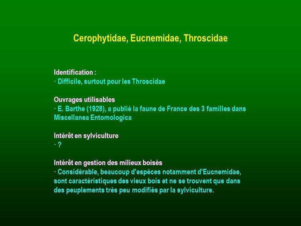 Identification : · Difficile, surtout pour les Throscidae Ouvrages utilisables · E. Barthe (1928), a publié la faune de France des 3 familles dans Mis