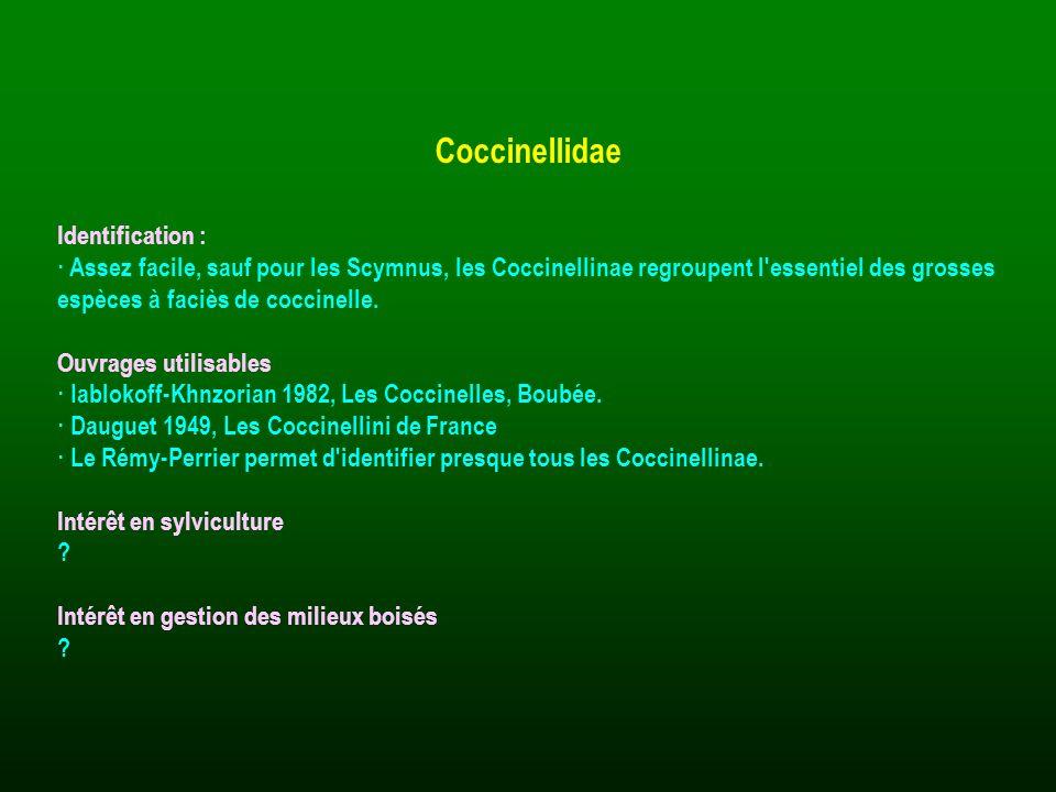 Identification : · Assez facile, sauf pour les Scymnus, les Coccinellinae regroupent l'essentiel des grosses espèces à faciès de coccinelle. Ouvrages
