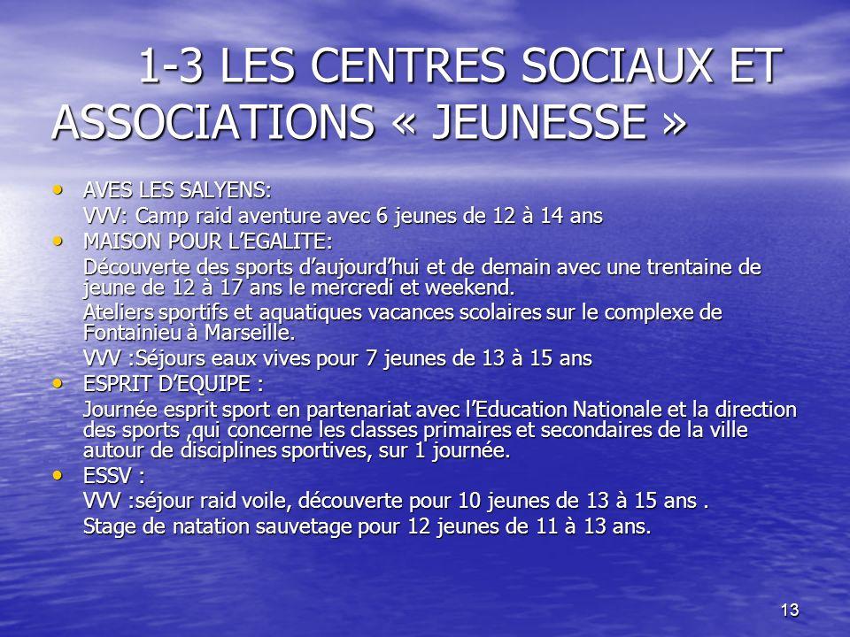 13 1-3 LES CENTRES SOCIAUX ET ASSOCIATIONS « JEUNESSE » 1-3 LES CENTRES SOCIAUX ET ASSOCIATIONS « JEUNESSE » AVES LES SALYENS: AVES LES SALYENS: VVV: