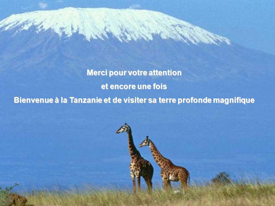 Merci pour votre attention et encore une fois Bienvenue à la Tanzanie et de visiter sa terre profonde magnifique