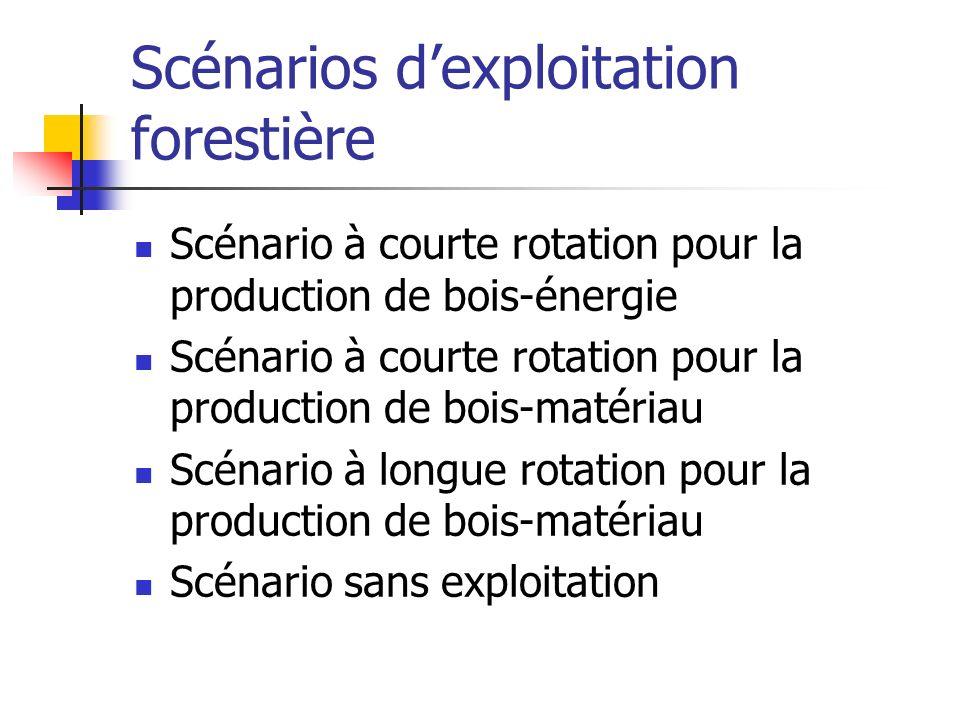 Scénarios dexploitation forestière Scénario à courte rotation pour la production de bois-énergie Scénario à courte rotation pour la production de bois
