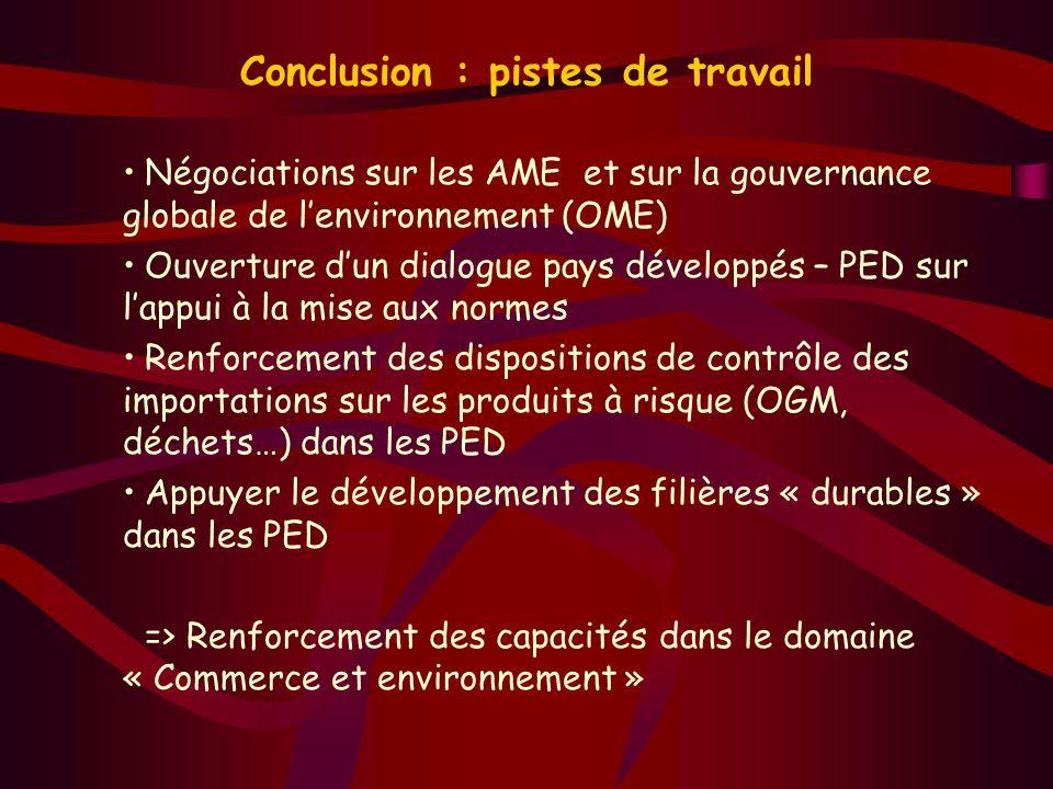 Conclusion : pistes de travail Négociations sur les AME et sur la gouvernance globale de lenvironnement (OME) Ouverture dun dialogue pays développés –