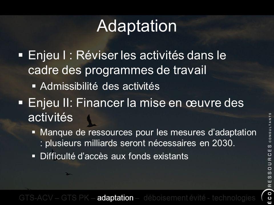 Adaptation Enjeu I : Réviser les activités dans le cadre des programmes de travail Admissibilité des activités Enjeu II: Financer la mise en œuvre des activités Manque de ressources pour les mesures dadaptation : plusieurs milliards seront nécessaires en 2030.