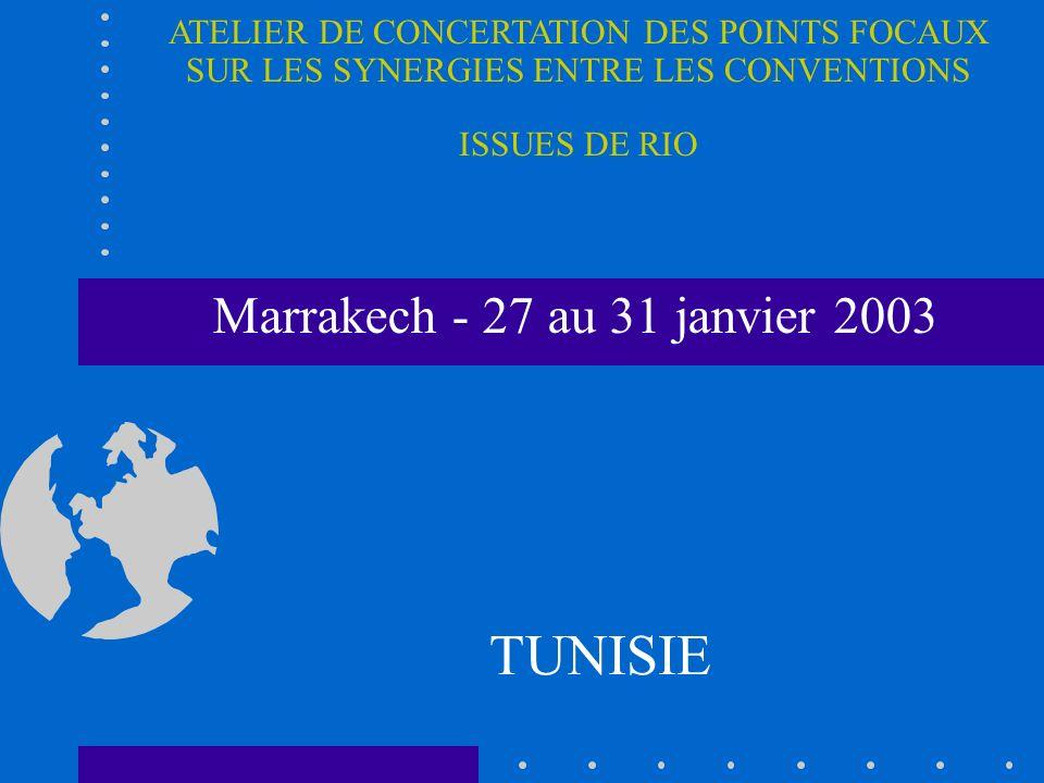 Marrakech - 27 au 31 janvier 2003 TUNISIE ATELIER DE CONCERTATION DES POINTS FOCAUX SUR LES SYNERGIES ENTRE LES CONVENTIONS ISSUES DE RIO