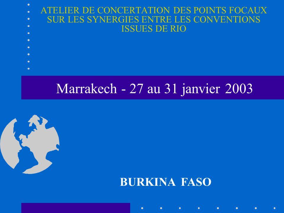 ATELIER DE CONCERTATION DES POINTS FOCAUX SUR LES SYNERGIES ENTRE LES CONVENTIONS ISSUES DE RIO BURKINA FASO Marrakech - 27 au 31 janvier 2003