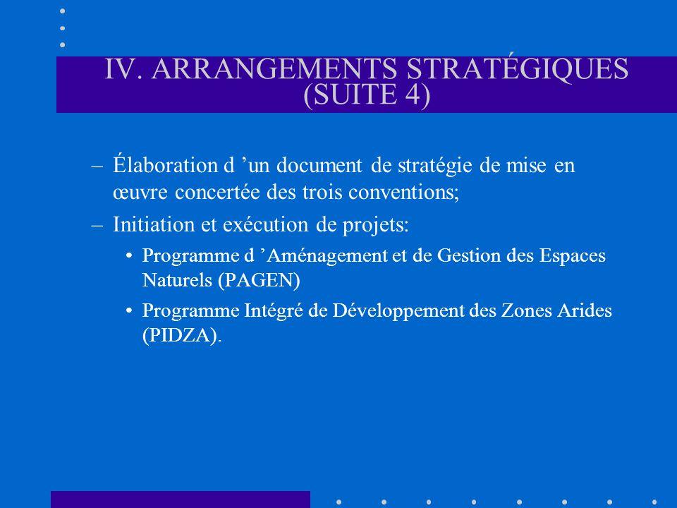 IV. ARRANGEMENTS STRATÉGIQUES (SUITE 4) –Élaboration d un document de stratégie de mise en œuvre concertée des trois conventions; –Initiation et exécu