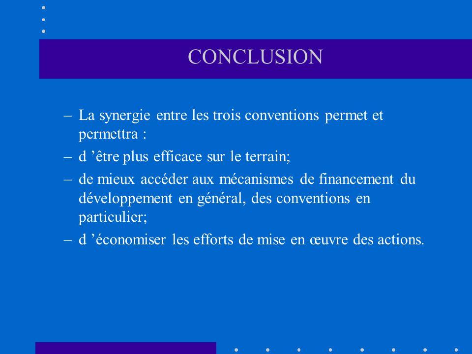 CONCLUSION –La synergie entre les trois conventions permet et permettra : –d être plus efficace sur le terrain; –de mieux accéder aux mécanismes de financement du développement en général, des conventions en particulier; –d économiser les efforts de mise en œuvre des actions.