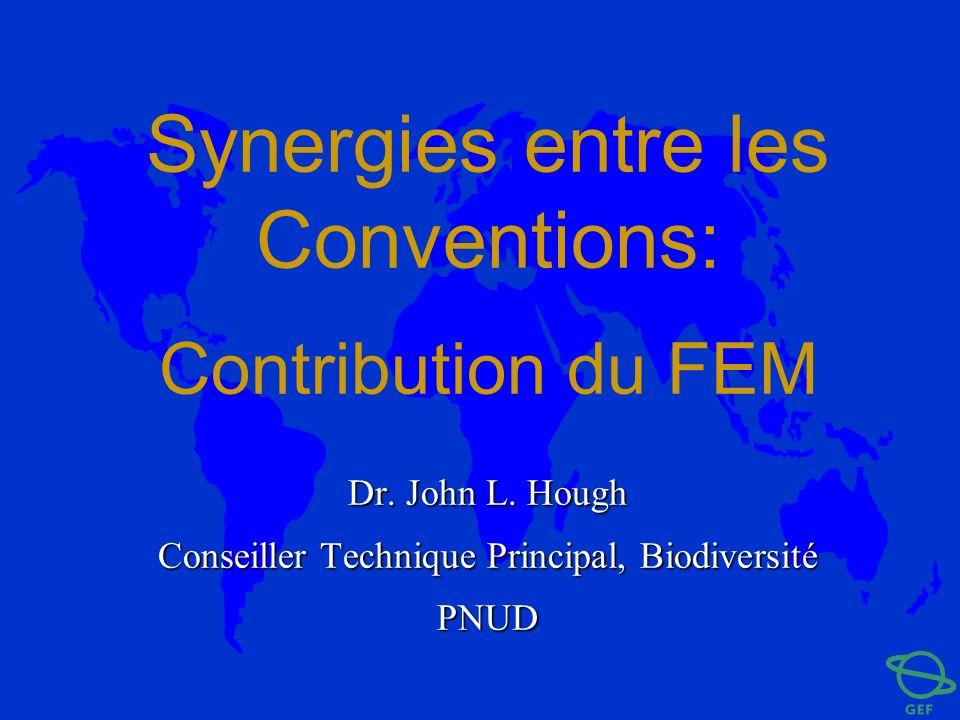 Synergies entre les Conventions: Contribution du FEM Dr. John L. Hough Conseiller Technique Principal, Biodiversité PNUD