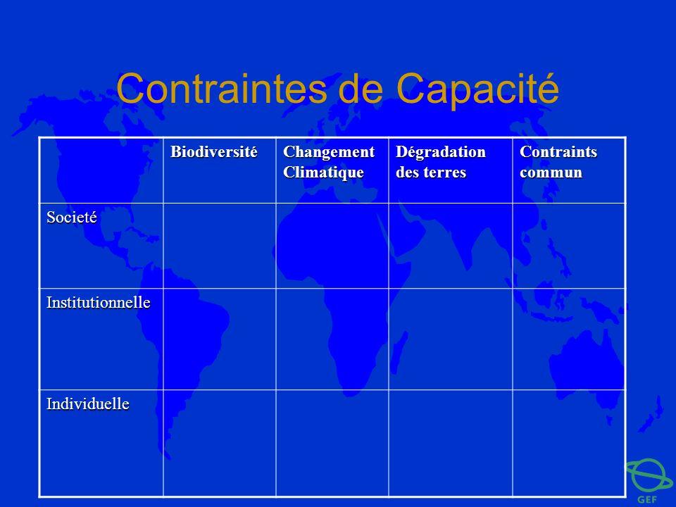 Contraintes de Capacité Biodiversité Changement Climatique Dégradation des terres Contraints commun Societé Institutionnelle Individuelle