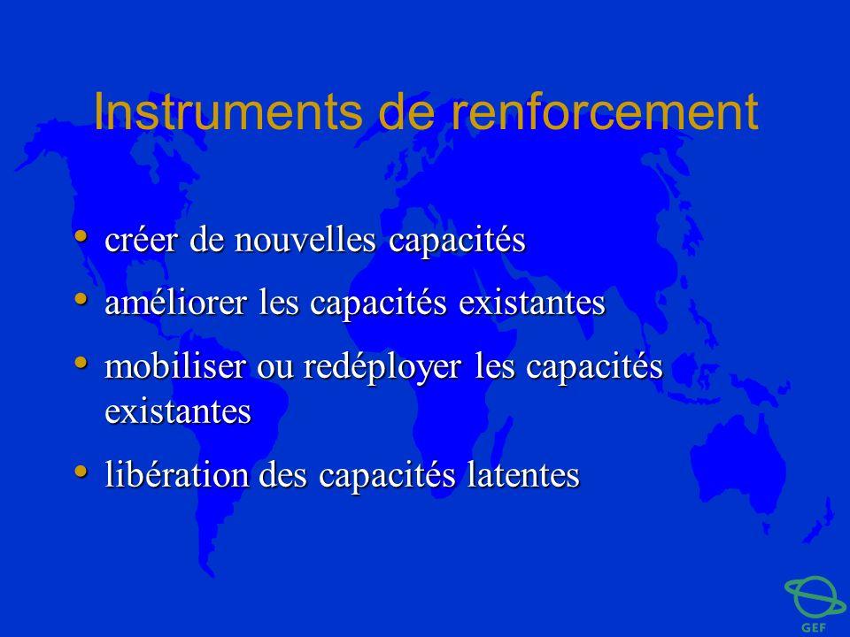 Instruments de renforcement créer de nouvelles capacités créer de nouvelles capacités améliorer les capacités existantes améliorer les capacités exist