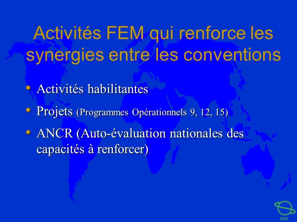 Activités FEM qui renforce les synergies entre les conventions Activités habilitantes Activités habilitantes Projets (Programmes Opérationnels 9, 12,