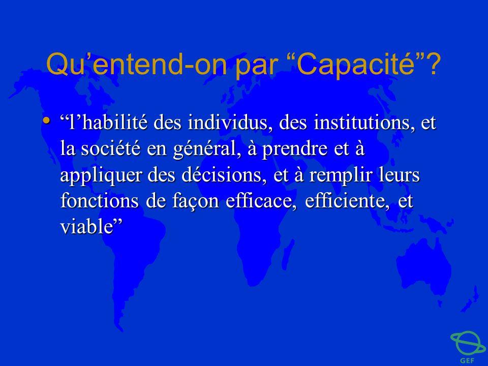 Quentend-on par Capacité? lhabilité des individus, des institutions, et la société en général, à prendre et à appliquer des décisions, et à remplir le