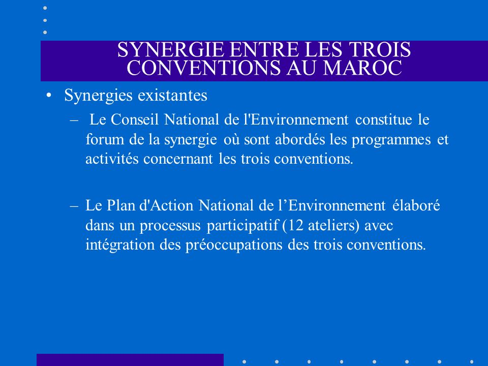 SYNERGIE ENTRE LES TROIS CONVENTIONS AU MAROC Synergies existantes – Le Conseil National de l'Environnement constitue le forum de la synergie où sont