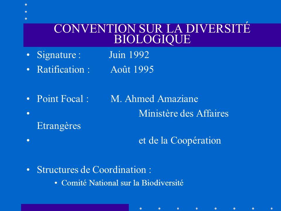 CONVENTION SUR LA DIVERSITÉ BIOLOGIQUE Signature : Juin 1992 Ratification : Août 1995 Point Focal : M. Ahmed Amaziane Ministère des Affaires Etrangère