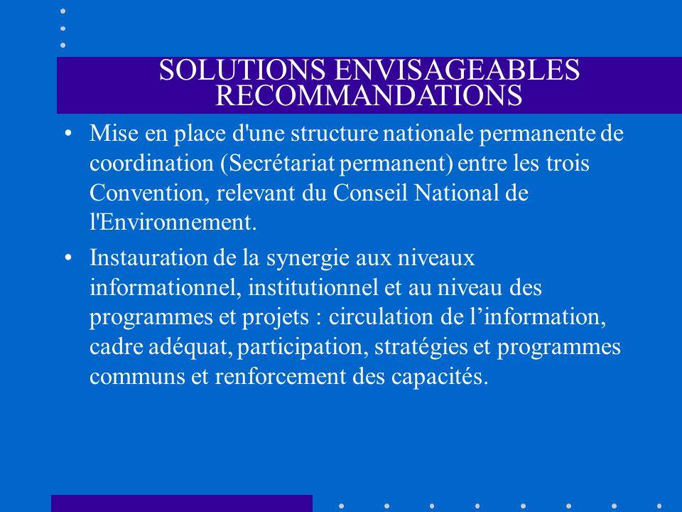 SOLUTIONS ENVISAGEABLES RECOMMANDATIONS Mise en place d'une structure nationale permanente de coordination (Secrétariat permanent) entre les trois Con