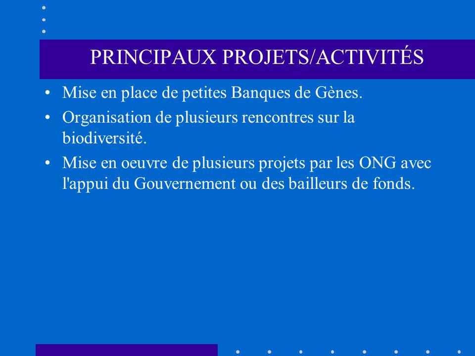 PRINCIPAUX PROJETS/ACTIVITÉS Mise en place de petites Banques de Gènes. Organisation de plusieurs rencontres sur la biodiversité. Mise en oeuvre de pl