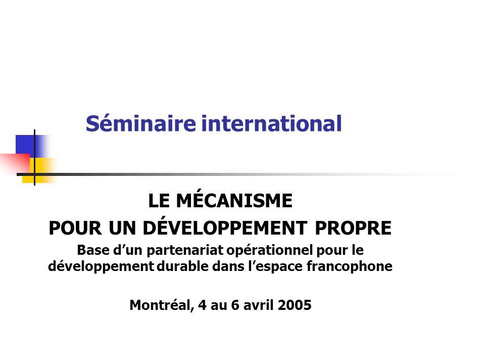 Séminaire international LE MÉCANISME POUR UN DÉVELOPPEMENT PROPRE Base dun partenariat opérationnel pour le développement durable dans lespace francophone Montréal, 4 au 6 avril 2005