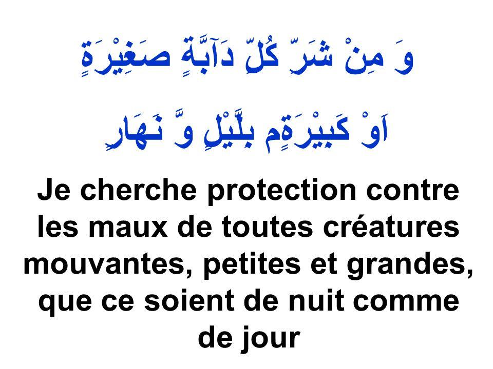 وَ مِنْ شَرِّ كُلِّ دَآبَّةٍ صَغِيْرَةٍ اَوْ كَبِيْرَةٍم بِلَّيْلٍ وَّ نَهَارٍ Je cherche protection contre les maux de toutes créatures mouvantes, pe