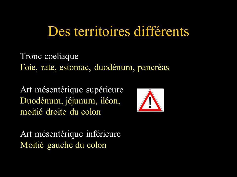 Des territoires différents Tronc coeliaque Foie, rate, estomac, duodénum, pancréas Art mésentérique supérieure Duodénum, jéjunum, iléon, moitié droite