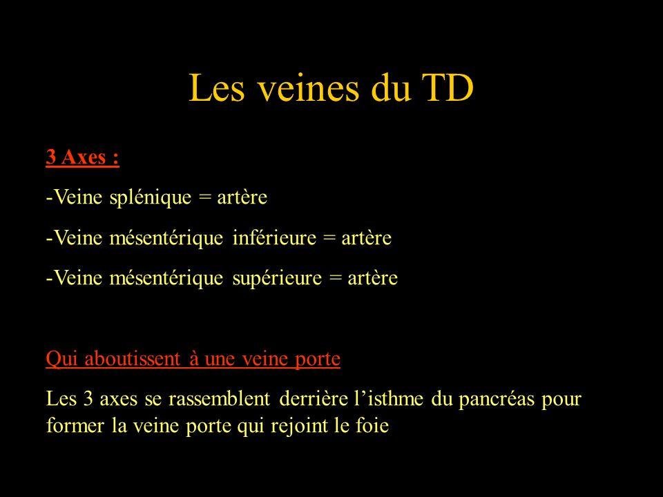 Les veines du TD 3 Axes : -Veine splénique = artère -Veine mésentérique inférieure = artère -Veine mésentérique supérieure = artère Qui aboutissent à