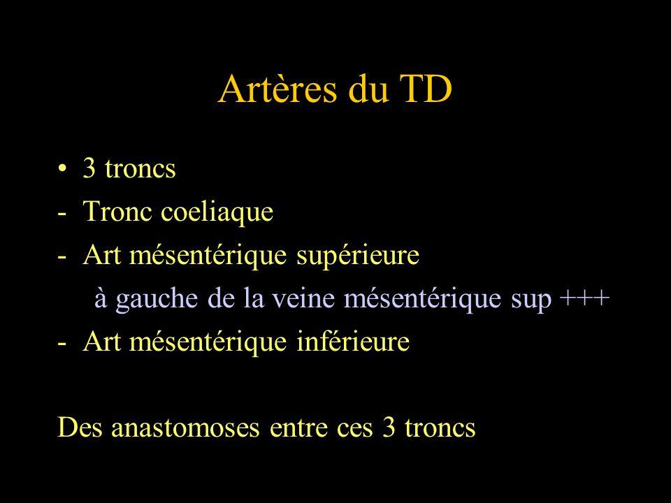 Artères du TD 3 troncs -Tronc coeliaque -Art mésentérique supérieure à gauche de la veine mésentérique sup +++ -Art mésentérique inférieure Des anasto