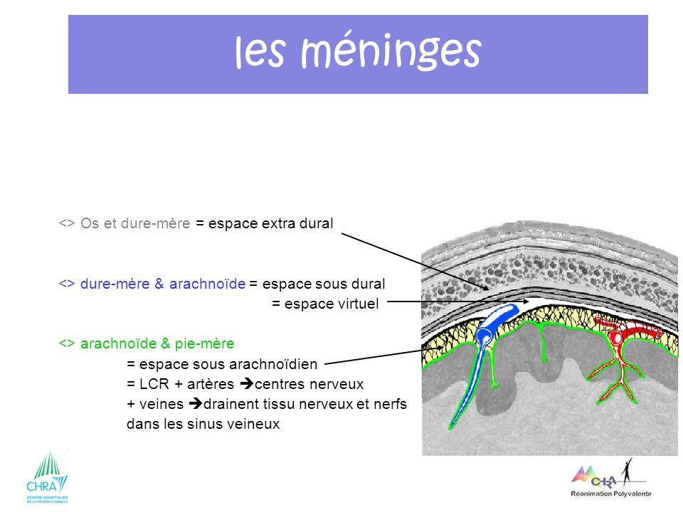 10 <> Os et dure-mère = espace extra dural <> dure-mère & arachnoïde = espace sous dural = espace virtuel <> arachnoïde & pie-mère = espace sous arach