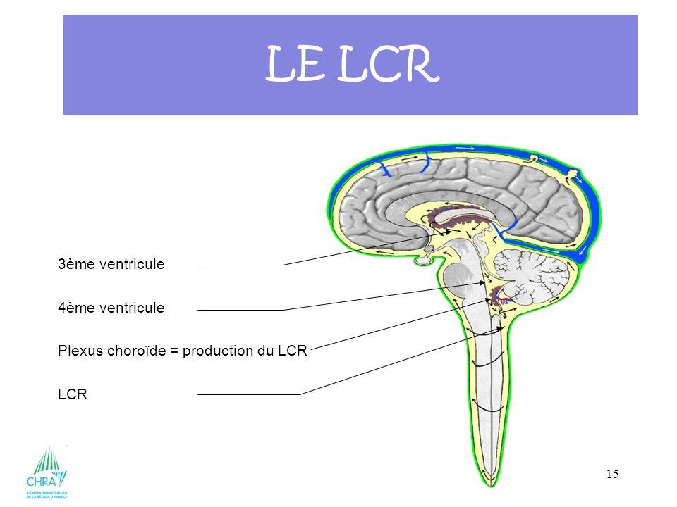 15 3ème ventricule 4ème ventricule Plexus choroïde = production du LCR LCR LE LCR