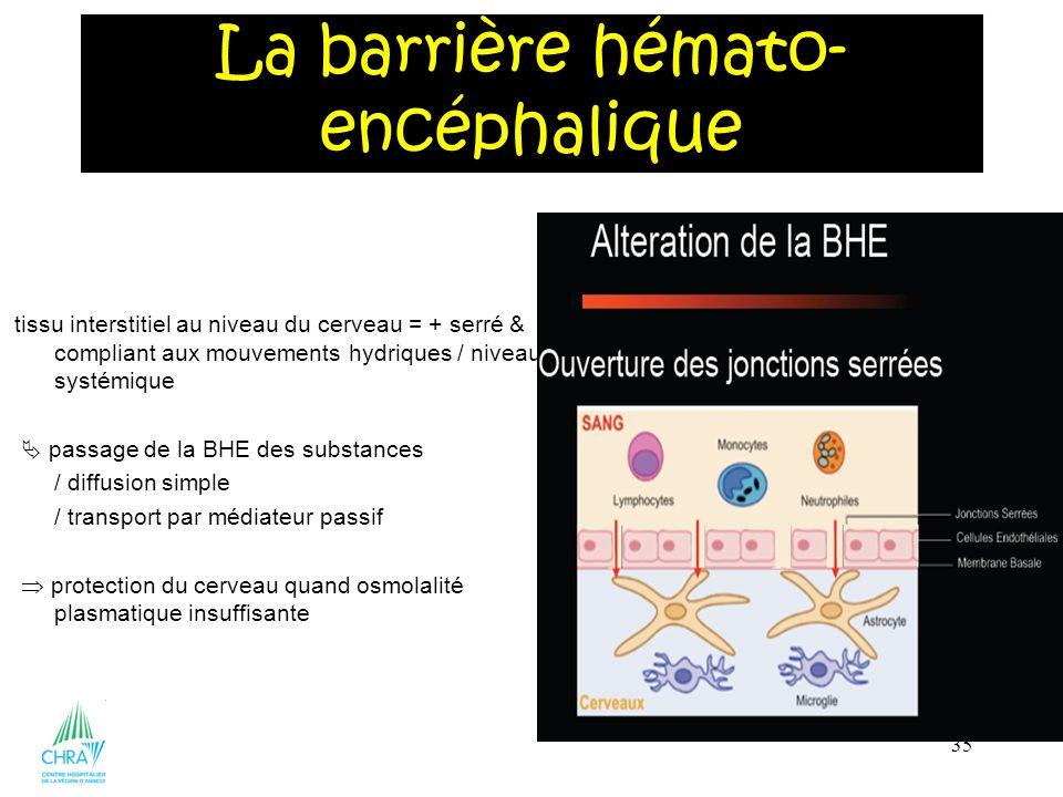35 tissu interstitiel au niveau du cerveau = + serré & - compliant aux mouvements hydriques / niveau systémique passage de la BHE des substances / dif