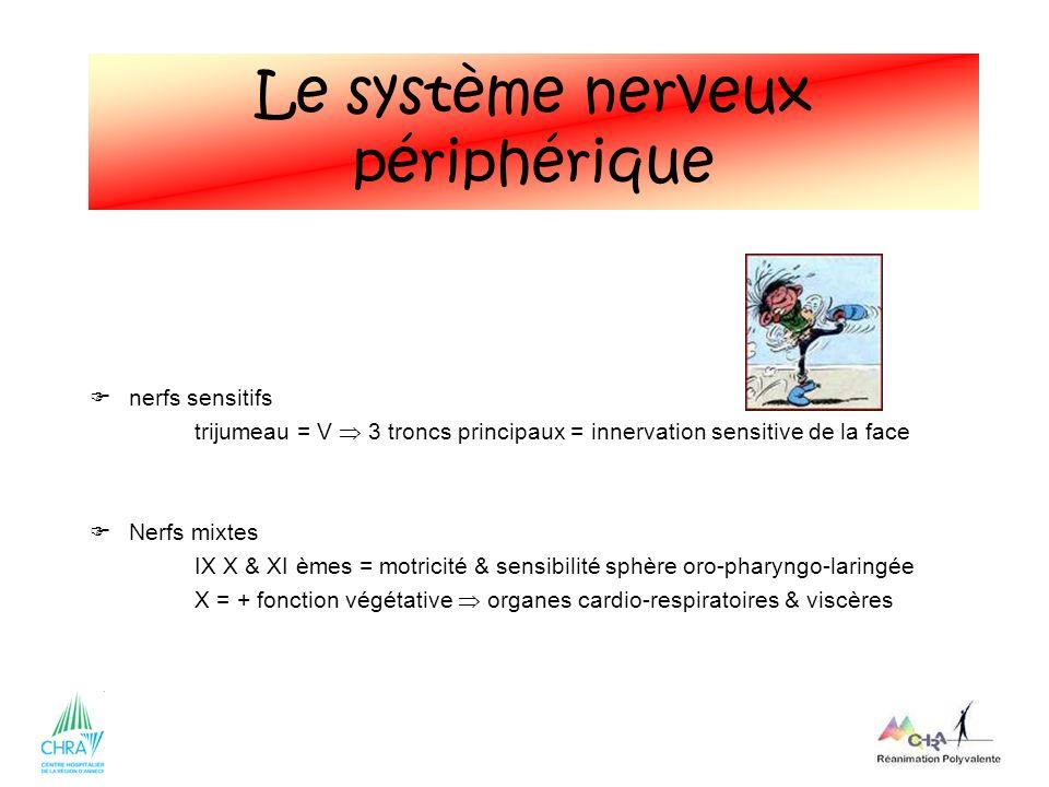 42 nerfs sensitifs trijumeau = V 3 troncs principaux = innervation sensitive de la face Nerfs mixtes IX X & XI èmes = motricité & sensibilité sphère o