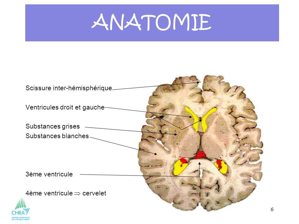 37 2 parties segment supérieur = encéphale subdivisé en 3 le cerveau le tronc cérébral le cervelet un segment inférieur = la moelle épinière Le système nerveux central