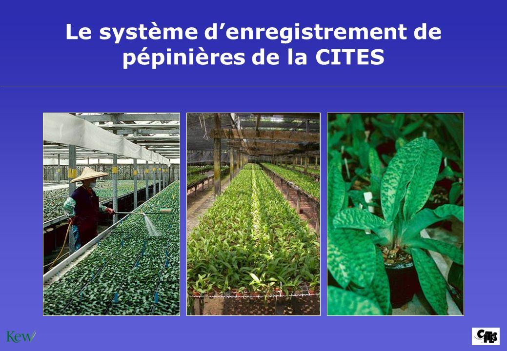 Le système denregistrement de pépinières de la CITES