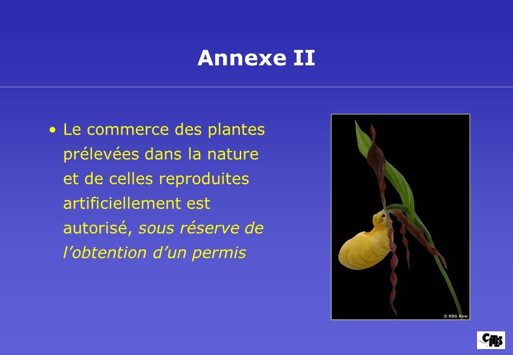 Le commerce des plantes prélevées dans la nature et de celles reproduites artificiellement est autorisé, sous réserve de lobtention dun permis Annexe
