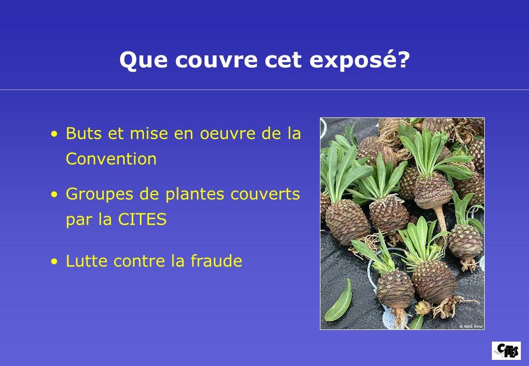 Buts et mise en oeuvre de la Convention Groupes de plantes couverts par la CITES Lutte contre la fraude Que couvre cet exposé?