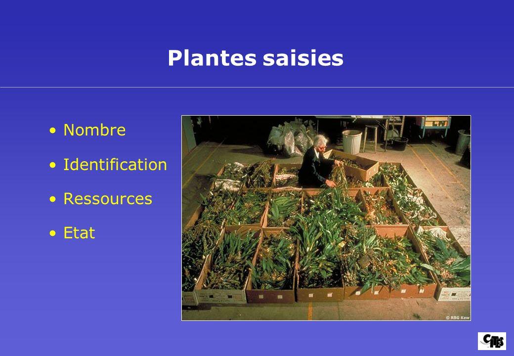 Plantes saisies Nombre Identification Ressources Etat