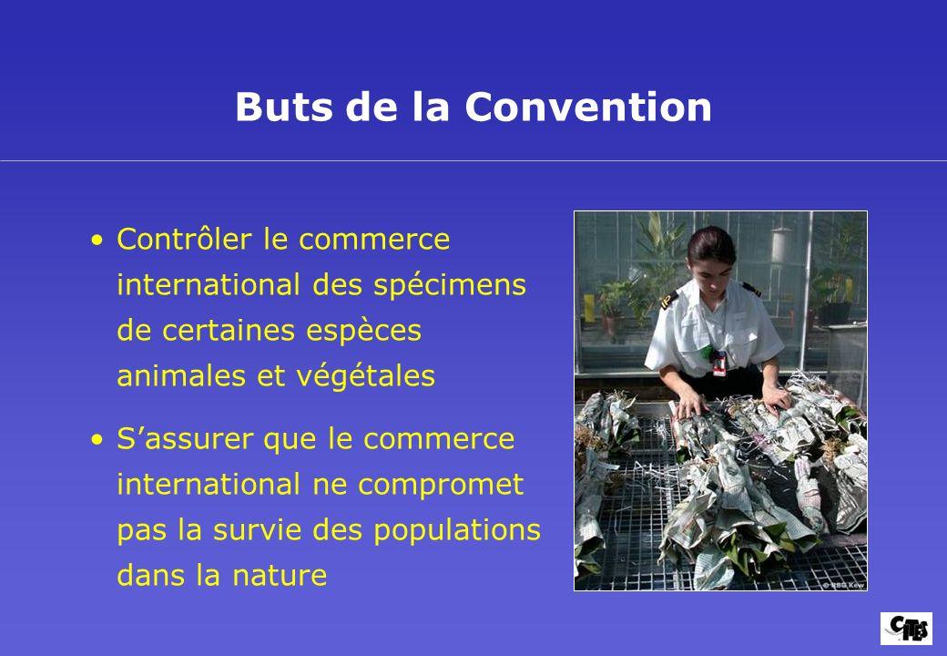 Contrôler le commerce international des spécimens de certaines espèces animales et végétales Sassurer que le commerce international ne compromet pas l