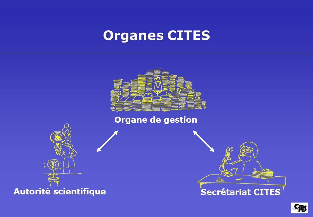 Organes CITES Organe de gestion Autorité scientifique Secrétariat CITES
